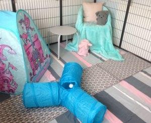 Willow Woods Rabbit Retreat